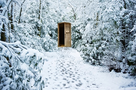 Path through winter forest leading to secret hidden door photo
