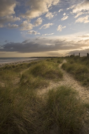 View along path on sand dune at Littlehampton photo