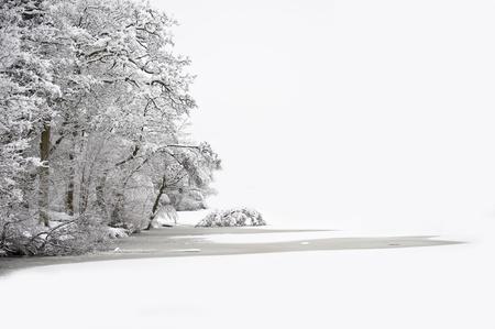 Beautiful Winter Wald Szene mit tief Jungfrau Schnee und viel Platz f�r Ihren Text und Copy space