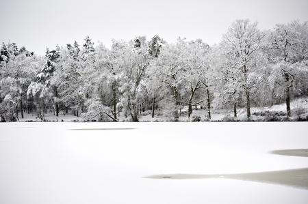 Winter snow lndscape across frozen lake Stock Photo - 8561117