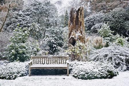 Parkbank im Schnee bedeckt Park umgeben von B�umen und Laub