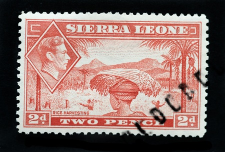 commonwealth: SIERRA LEONE - CIRCA 1940 - Postage stamp showing native of country rice harvesting and inset of King George 6th Editorial