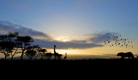 Silhouette of animals in Africa theme setting with beautiful colorful sunset photo