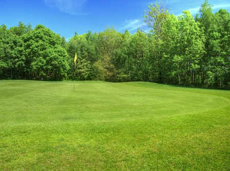 golfcourse: Beautiful vivid colorful image of golf course with green and fairway on sunny day