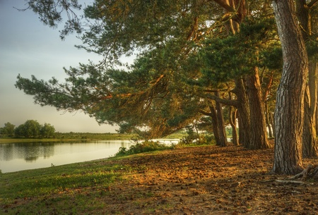 Fairytale style image of forest scene with lake and trees during vibrant sunset photo