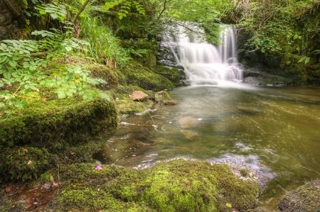 Grünen Waldes Szene mit langer Belichtungszeit verwischt Wasserfall fließt über Felsen und in Flechten und Moosen bedeckt