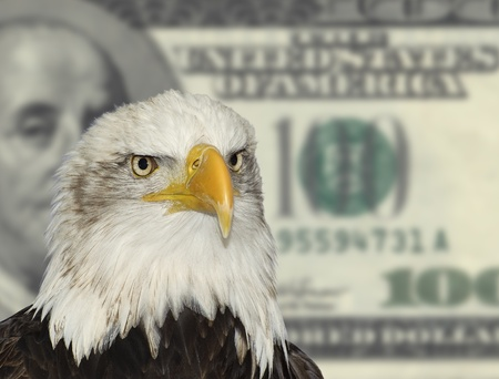 American bald eagle symbol against dollar currency background photo