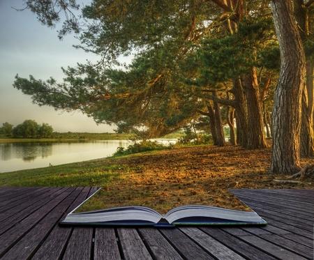 Kreatives Konzept Bild der Gesamtstruktur Fantasielandschaft magische Buch von Seiten herein