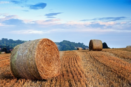 Lovely sunset golden hour landscape of hay bales in field in English countryside Stock Photo - 10219050