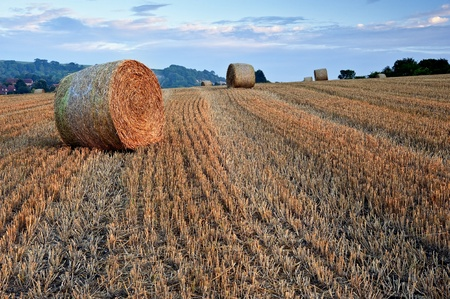 Lovely sunset golden hour landscape of hay bales in field in English countryside Stock Photo - 10268472
