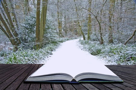 surreal landscape: Creative concept idea of Winter landscape coming out of pages in magical book Stock Photo