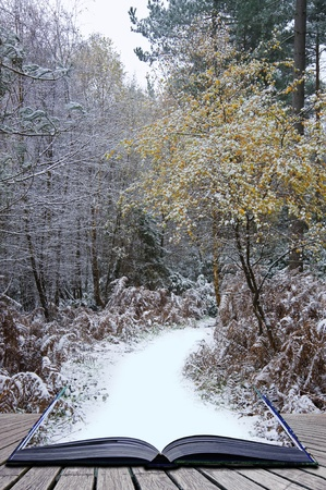 마법의: 겨울 풍경의 창조적 인 개념의 아이디어는 마법의 책의 페이지에서 나오는