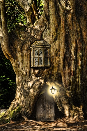 Fairytale fantasy house in tree trunk in forest photo