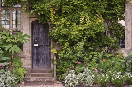 architrave: Old wooden door or stone brick house with ivy and plants at entrance Stock Photo