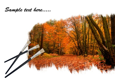 Creative concept image of new paintbrushes painting beautiful Autumn Fall forest landscape onto paper photo