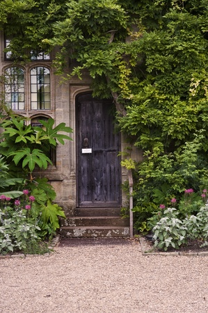 Old wooden door or stone brick house with ivy and plants at entrance photo
