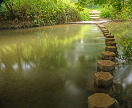 Scène de la forêt enchantée de ruisseau qui coule lentement avec des reflets dynamiques