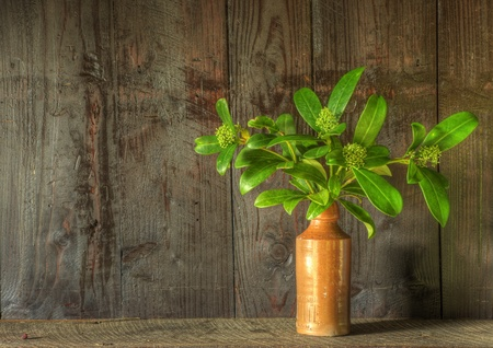 to woo: Still life image of dried flowers in rustic vase against weathered wooden background Stock Photo