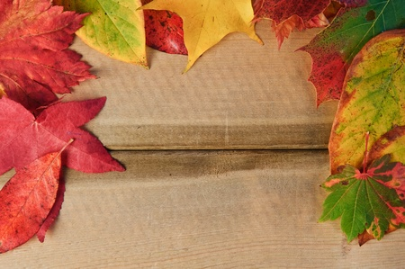 Colorful Autumn Fall leaves on rustic grunge wooden background photo
