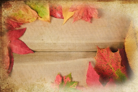 nautral: Colorful Autumn Fall leaves on rustic vintage grunge wooden background