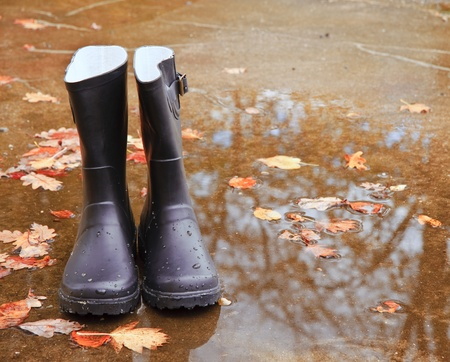 Autumn season concept image of wellington boots standing amongst golden leaves and rain puddles photo