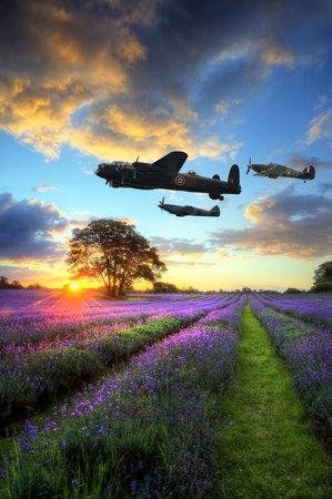 頭上を飛ぶ飛行機を 2 次世界大戦 RAF とイギリスの田園風景の中の活気に満ちた熟したラベンダー畑上空大気の雲と見事な夕焼けの美しい画像