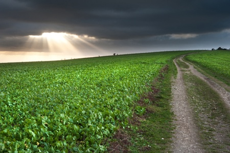 Stunning moody sky with beautiful cloud formations and colors over countryside landscape of path leading into distance Stock Photo - 12324124