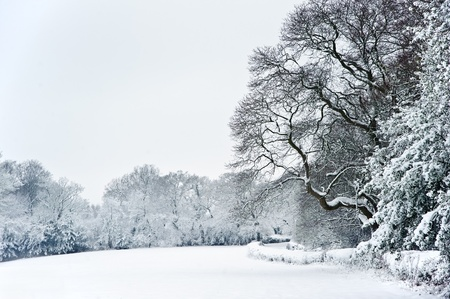 english countryside: Winter snow landscape in English countryside Stock Photo