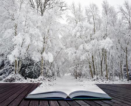 마법의: 마법의 책의 페이지에서 나오는 서리와 눈이 덮여 나무 반짝이의 아름 다운 풍경