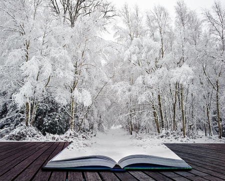 mystical forest: Beautiful landscape of glistening frost and snow covered trees coming out of pages in magic book Stock Photo