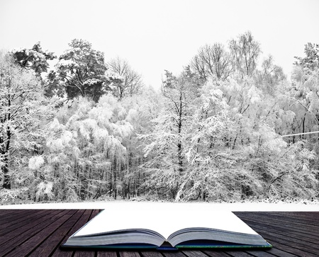 Beautiful landscape of glistening frost and snow covered trees coming out of pages in magical book photo