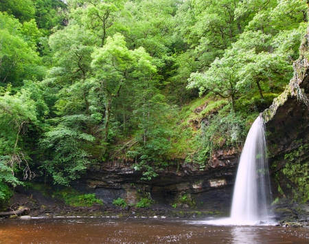 Beautiful image of waterfall in forest with stram and lush green foliage photo