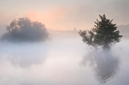 Fog mist landscpae over lake in Autumn Fall with vibrant colors  photo