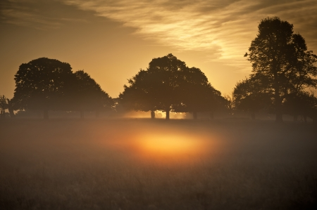 Rising sun illuminates fog from underneath making fog glow eerily photo