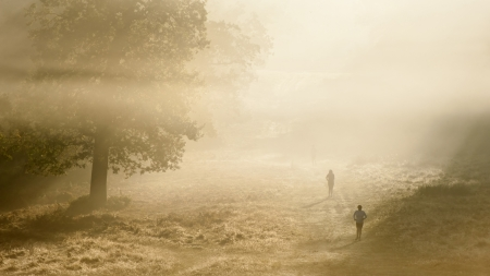 Foggy Autumn morning in Richmond Park, London with joggers running through landscape