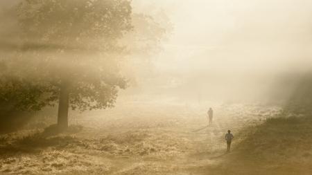 Mistige ochtend herfst in Richmond Park, Londen met joggers loopt door landschap