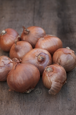 Shallots onions on grunge worn wooden background photo
