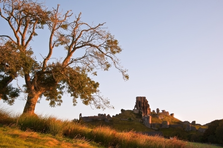 Medieval castle ruin on Autumn Fall morning Stock Photo - 17075252