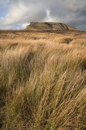 Pen-y-Ghent in distance behind moors in Yorkshire Dales National Park photo