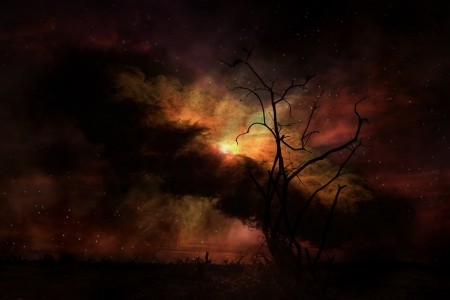 stark: Stark tree silhouette against night sky  Stock Photo