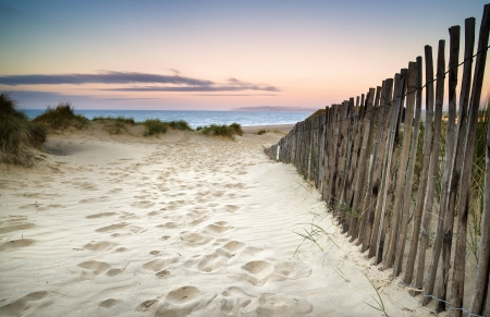 Landscape of grass in sand dunes at snrise with wooden fences under sand dunes photo
