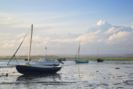 sunlgiht: Leisure boats at low tide in harbor during Summer sunset