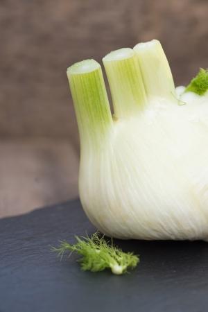 foeniculum vulgare: Fresh fennel bulb on slate and wooden background