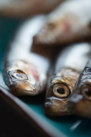 Fresh sprats fish on serving dish Stock Photo - 23178319