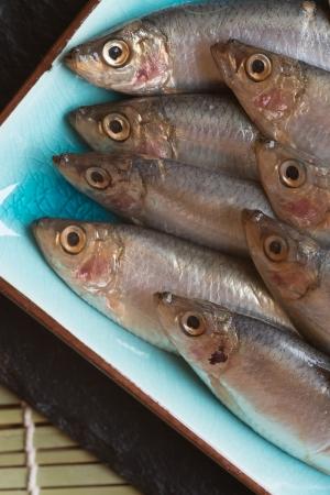 Fresh sprats fish on serving dish Stock Photo - 24096159