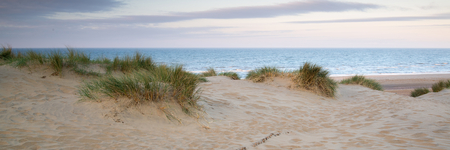 Panorama landscape of sand dunes system on beach at sunrise photo