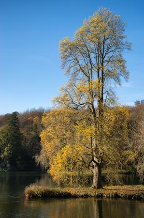 stourhead: Trees and main lake in Stourhead Gardens during Autumn. Stock Photo