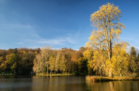 stourhead: Trees and main lake in Stourhead Gardens during Autumn. Stock Photo
