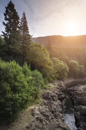 Beautiful morning landscape image of sunlight through trees into canyon creek below photo