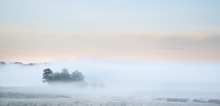 Beautiful thick fog sunrise Autumn Fall landscape over fields with treetops visible through fog photo